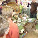 scholen_project_2008_013.jpg