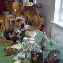 scholen_project_2008_025.jpg